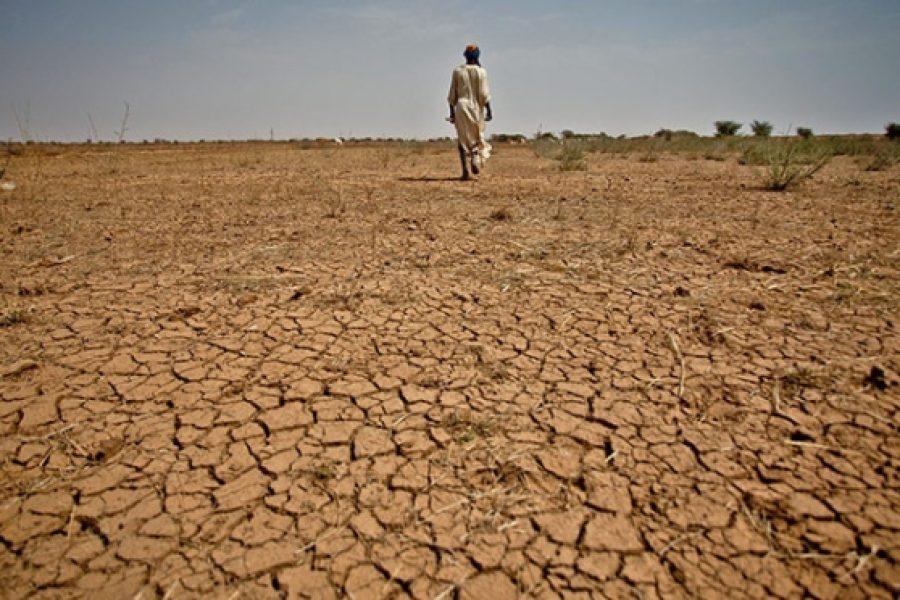 Sparizioni forzate e sparizioni programmate nel Sahel