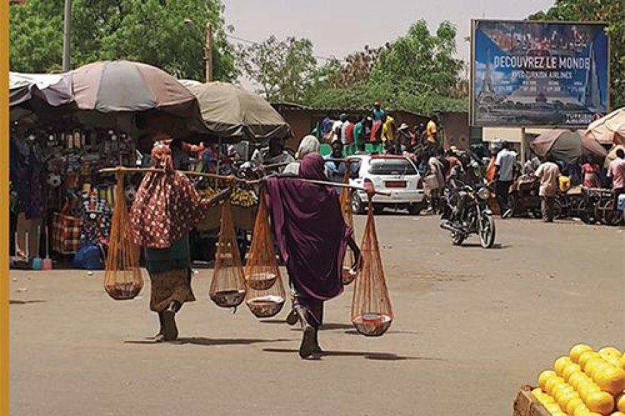 """""""Il Niger e le nuove frontiere dell'Europa"""" di F. Amato e A. Iocchi, Editrice Socialmente"""