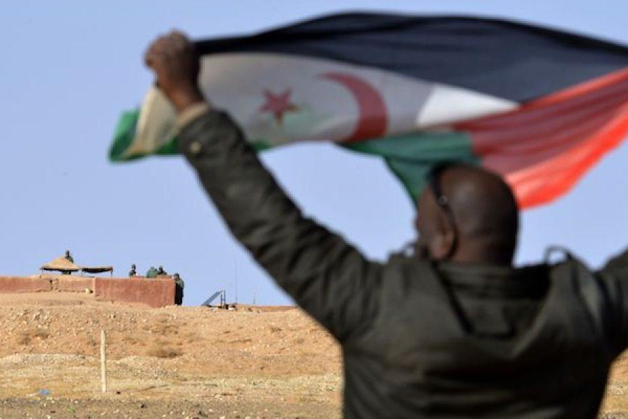 Rete Italiana Pace e Disarmo: Si fermino gli scontri armati nel Sahara Occidentale